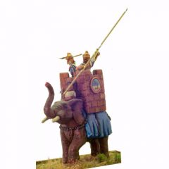 C17 Elephant and Tower