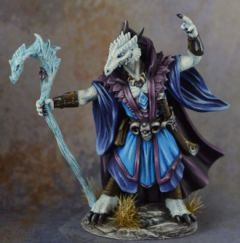 DSM7492 Male Dragonkin Mage with Staff