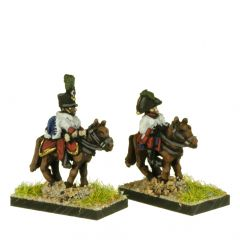 AT502 Aide de Camp and Colonels / Brigadiers Command