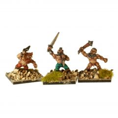 DWF11 Dwarf Berserkers with Hand Weapons