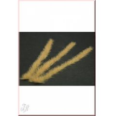 GL-034 Strips of long grass, brown (dry)