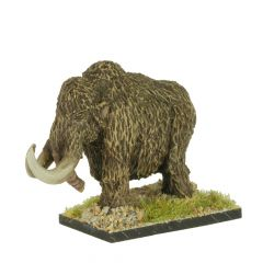 PDN11 Mammuthus primigenius (North American Mammoth)