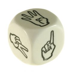 American Sign Language Dice D6